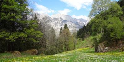 Murgtal Bouldern Churfirsten Bouldering Climbing Schweiz Switzerland Bergtal